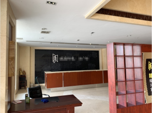 蘇州城南印象生活廣場229㎡房產拍